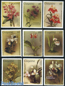Orchids 9v