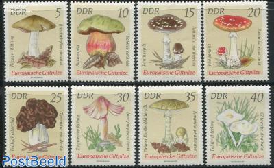 Mushrooms 8v