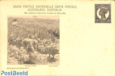Illustrated postcard, 1.5d