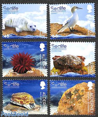 Alderney's Ramsar site 6v