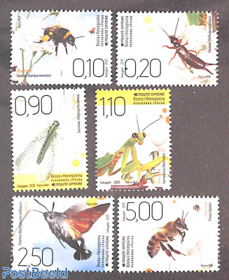Insects 6v