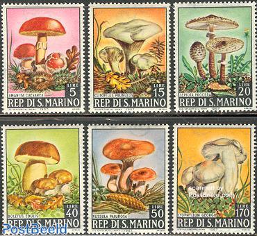 Mushrooms 6v